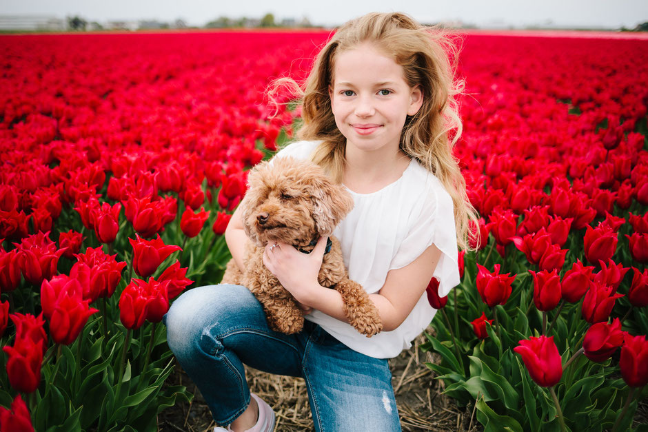 red tulips puppy girl Voorhout