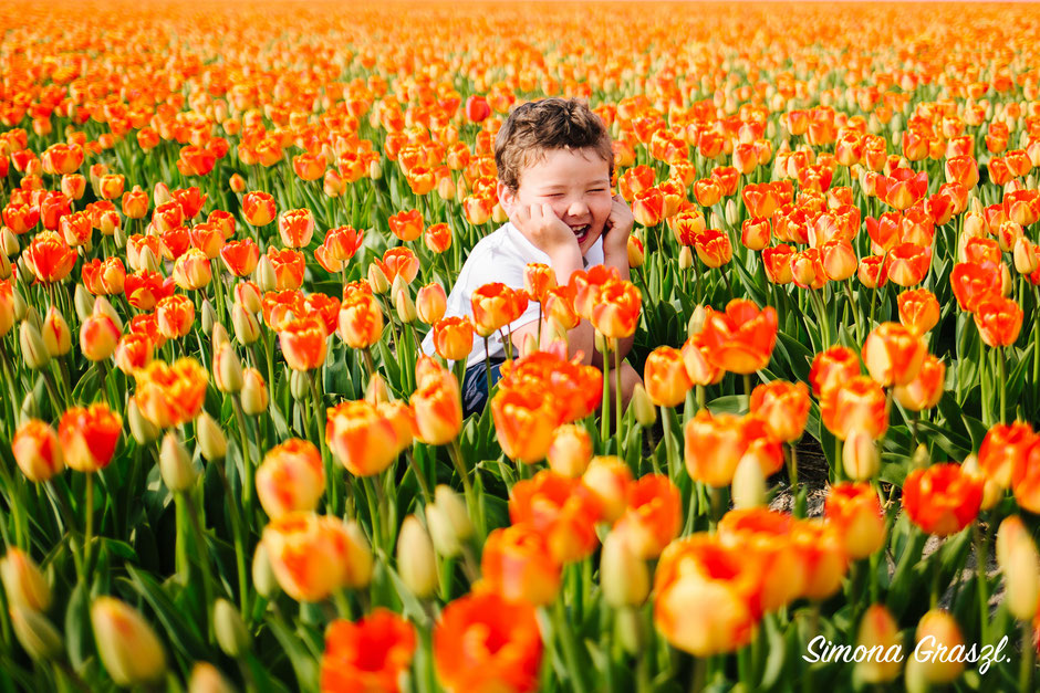 orange tulips boy Voorhout photography