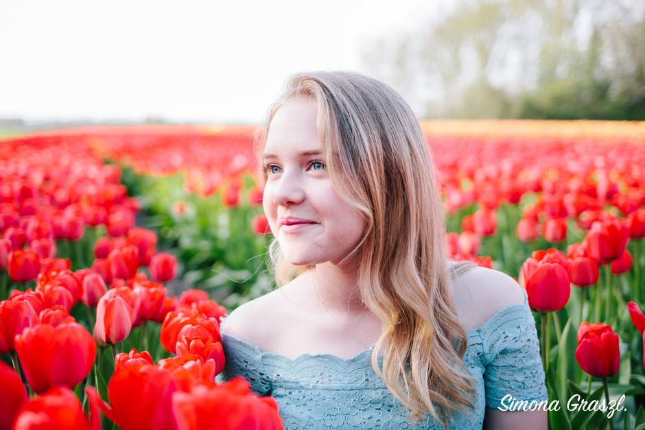 tulip fields voorhout