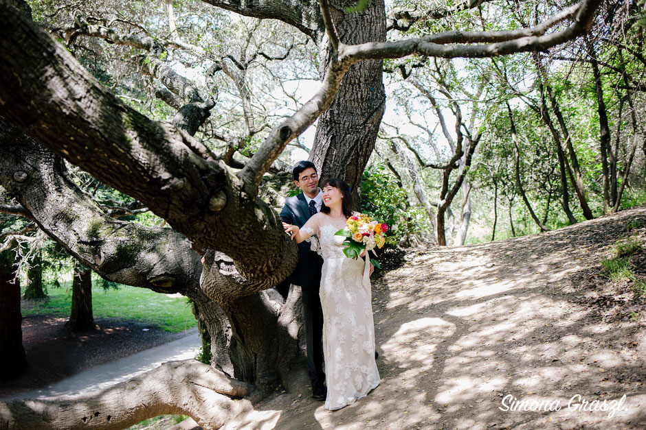 The day before when we went to see the location I spotted these Californian oaks which I knew would be perfect for the couples shots.