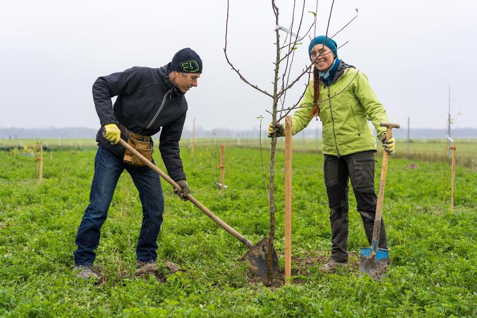 Markus & Sabine beim Apfelbäumchen Pflanzen; Foto: Lukas Zottl