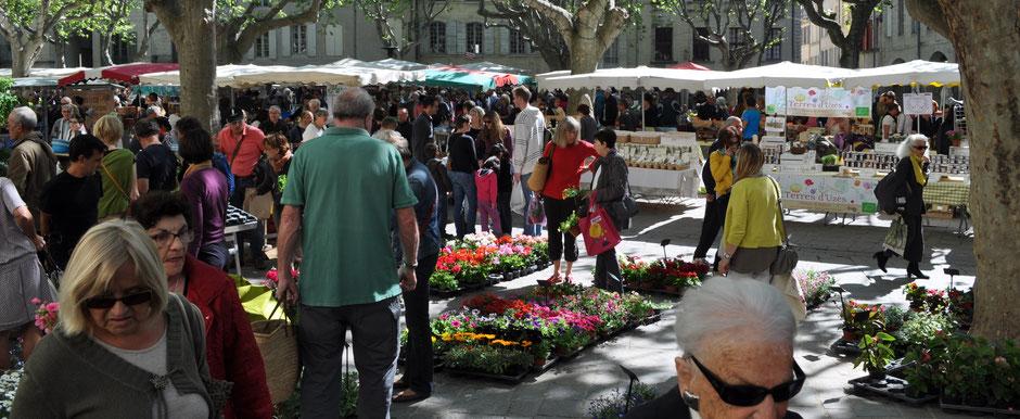 Uzès - Place aux Herbes an einem Mittwochvormittag ...