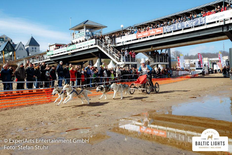 Die Zuschauer boebachten gespannt den Start der Musher und prominenten Gäste am Strand in Heringsdorf © ExperiArts Entertainment - Stefan Stuhr