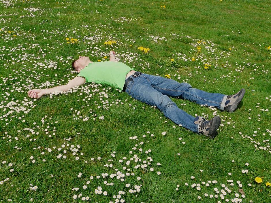 Wie auf einer Liegewiese voller Blumen im Sommer: Entspannen, neue Kraft tanken und Lösungswege finden durch Integrales Körpercoaching.