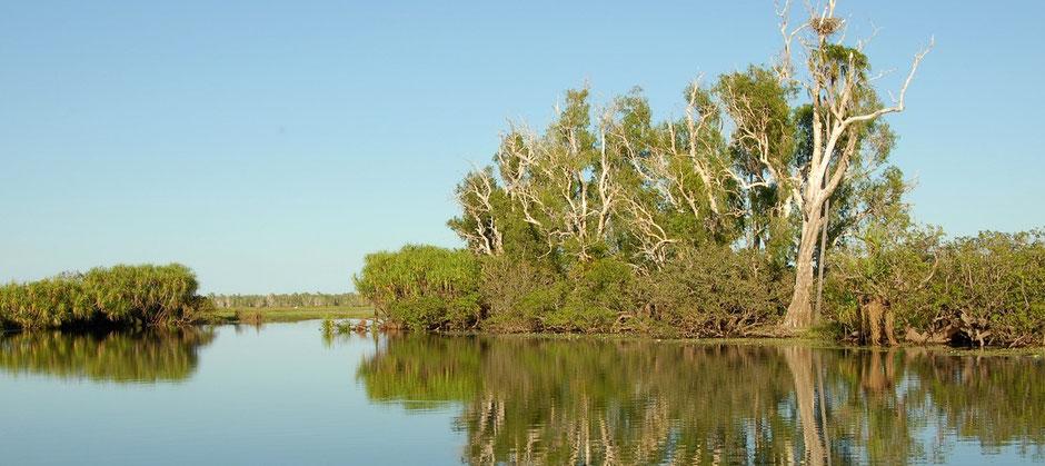 Beste Australische Nationalparks: Kakadu