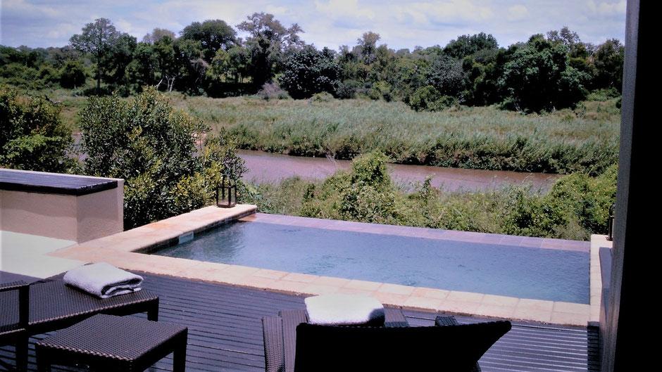 Afrika Safari Reise Blog Swimming Pool Sabi Sands