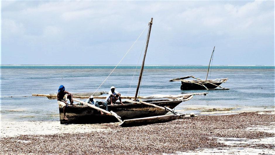 Mombasa: Beste Reisezeit, Klima, Wetter