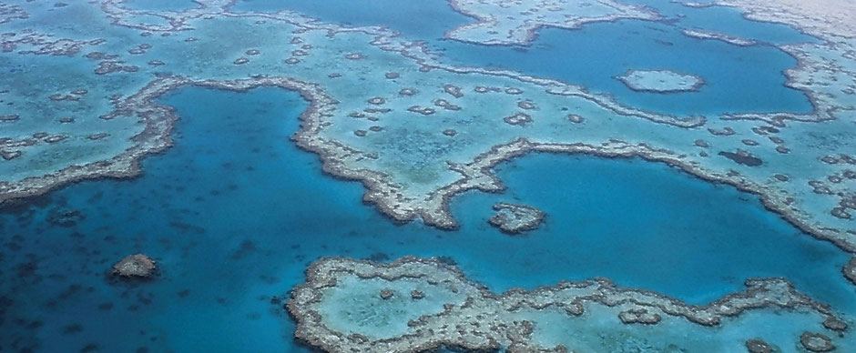 Beste Australien Nationalparks : Great Barrier Reef Marine Park