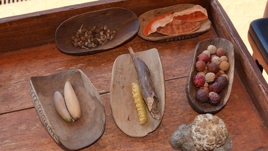Essen in Australien Bush Tucker, Essen der Australischen Ureinwohner