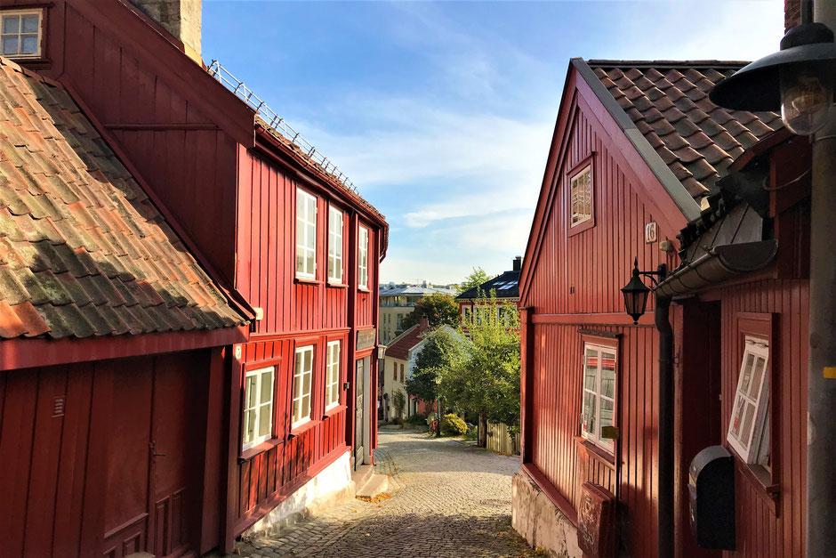 Reisen in Zeiten von Corona: Oslo statt Oslob