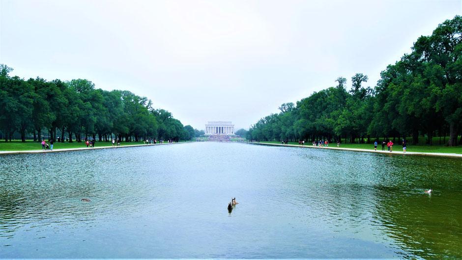 Washington Sehenswürdigkeiten: National Mall