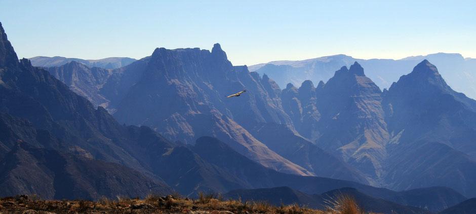 beste reisezeit südafrika rundreise