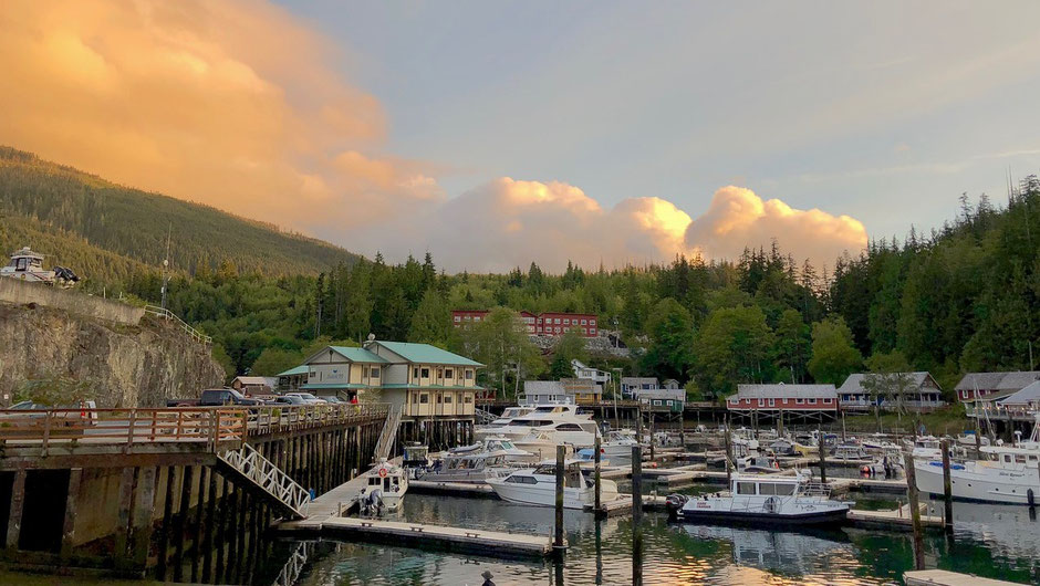 Vancouver Island Blog - Telegraph Cove