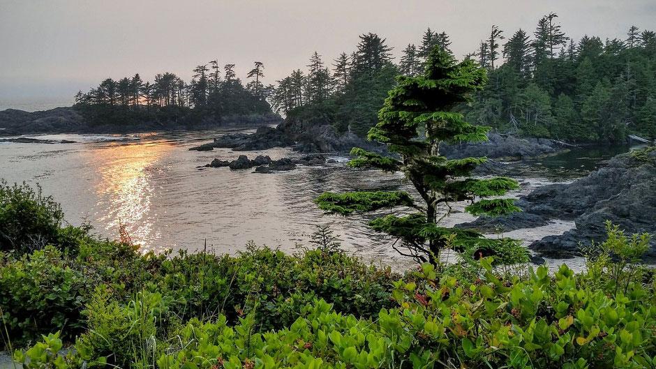 Vancouver Island Blog - Ucluelet