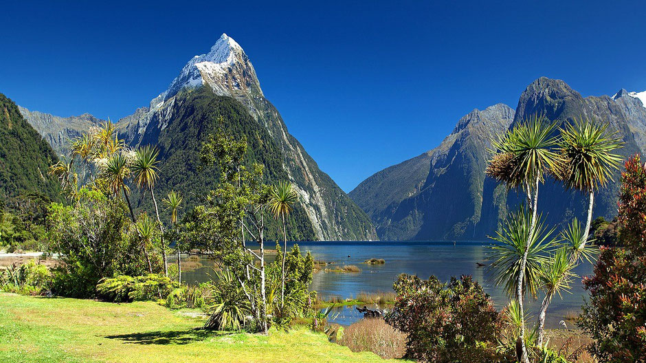 Reiseziele Februar warm  - Milford Sound in Neuseeland