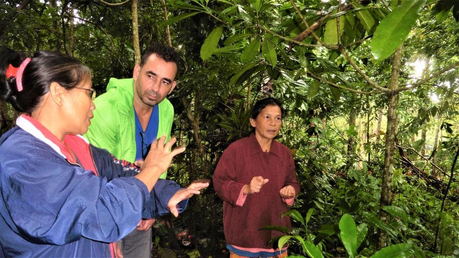 Reiseführer Siquijor Philippinen - Naturheilkunde und Aberglaube