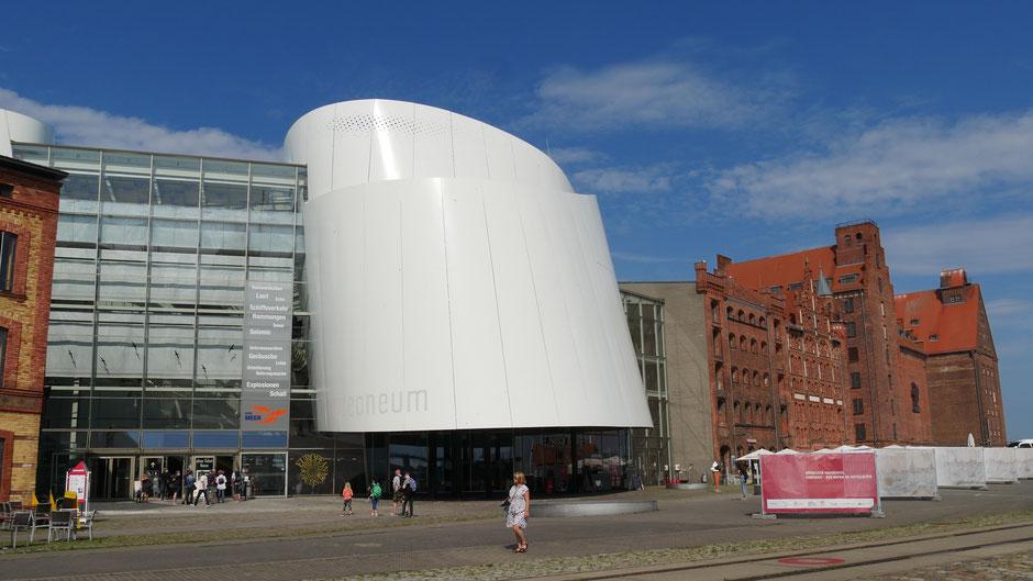 Stralsund Tipps: Besuch des Ozeaneum mit dem größten Aquarium Deutschlands