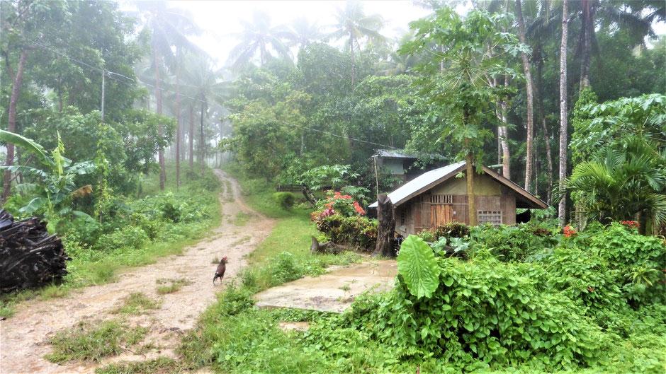 Reiseführer Siquijor Philippinen - Auf dem Weg zum Hexenhäuschen