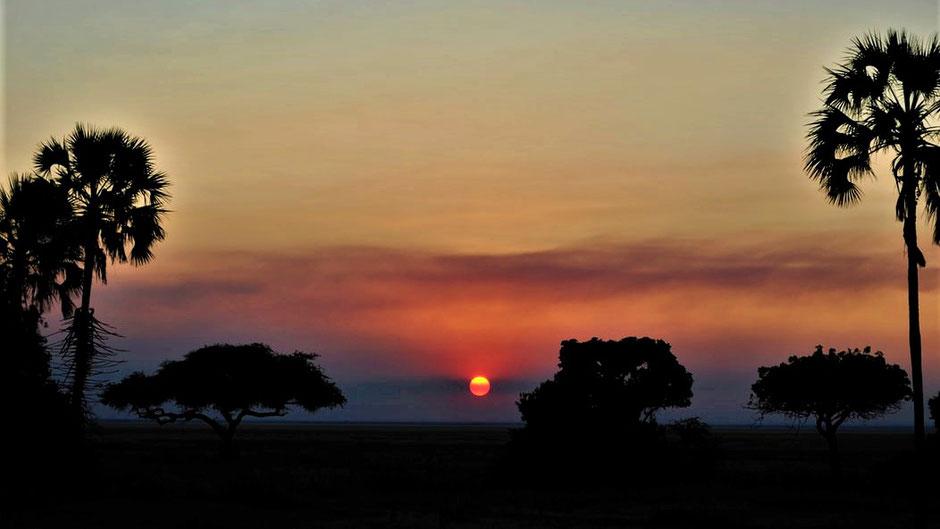 Afrika Safari Erfahrungen Sonnenaufgang