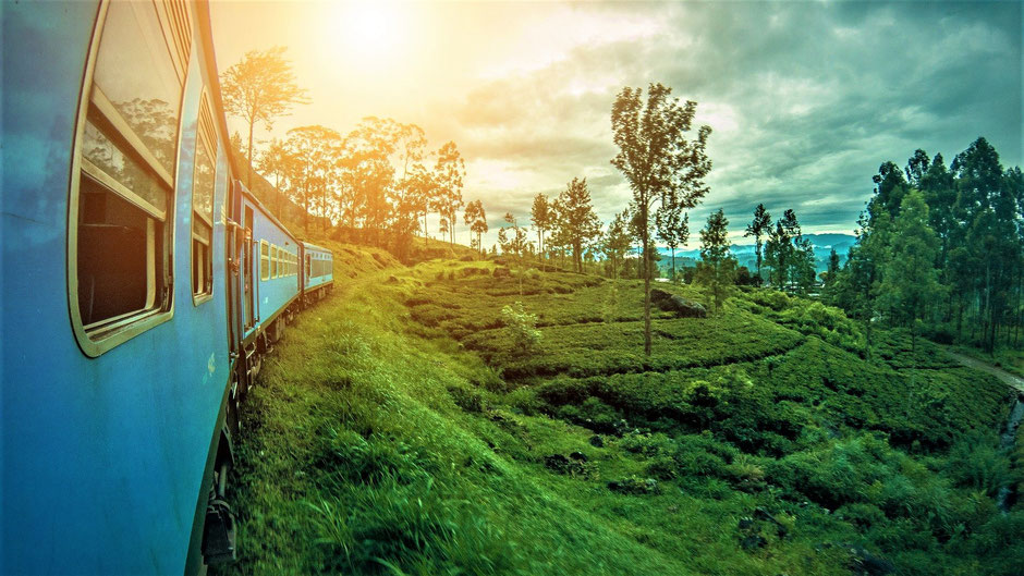 Reiseziele Januar Asien - Sri Lanka, Ella