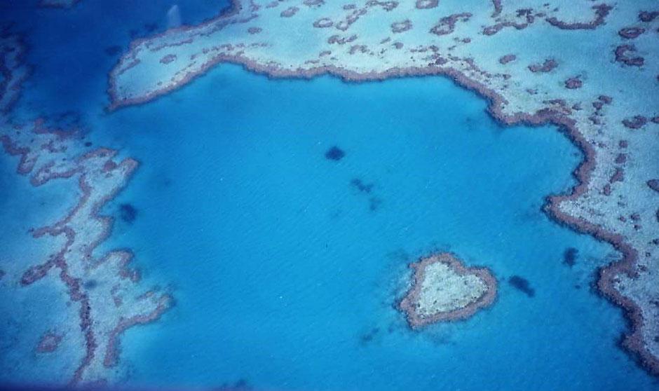 Beste Australische Nationalparks : Whitsunday Islands