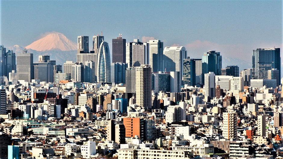 Tokio Sehenswürdigkeiten  Skyline Blick mit Fuji-san