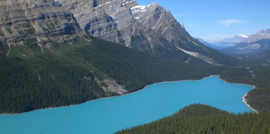 Banff National Park Sehenswürdigkeiten Lake Peyto