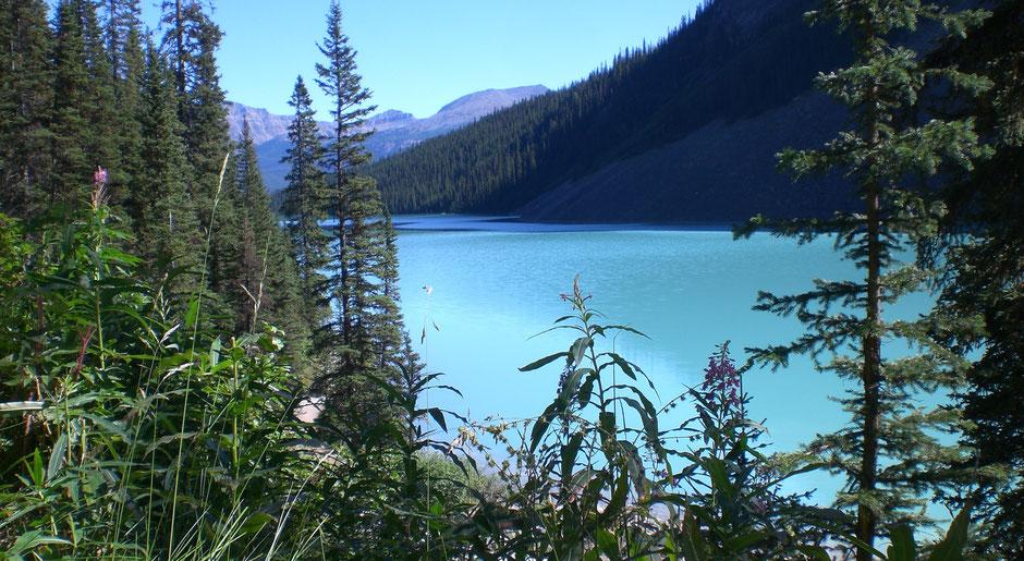 Sehenswürdigkeiten Banff Reise Lakeshore Trail