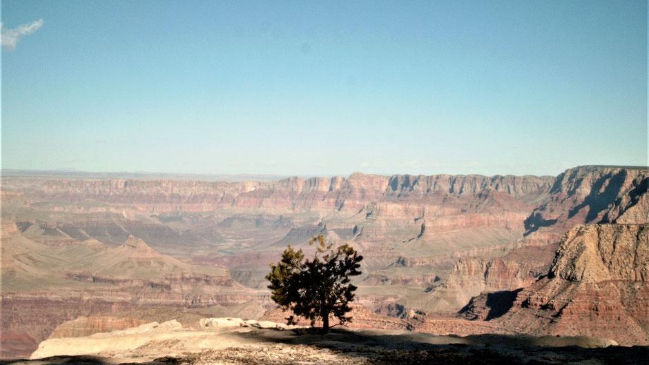 Grand Canyon Sehenswürdigkeiten