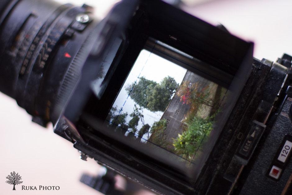 被写体を配置し、すそを捌き、カメラ位置を決め、ピントを合わせる。そこまで。
