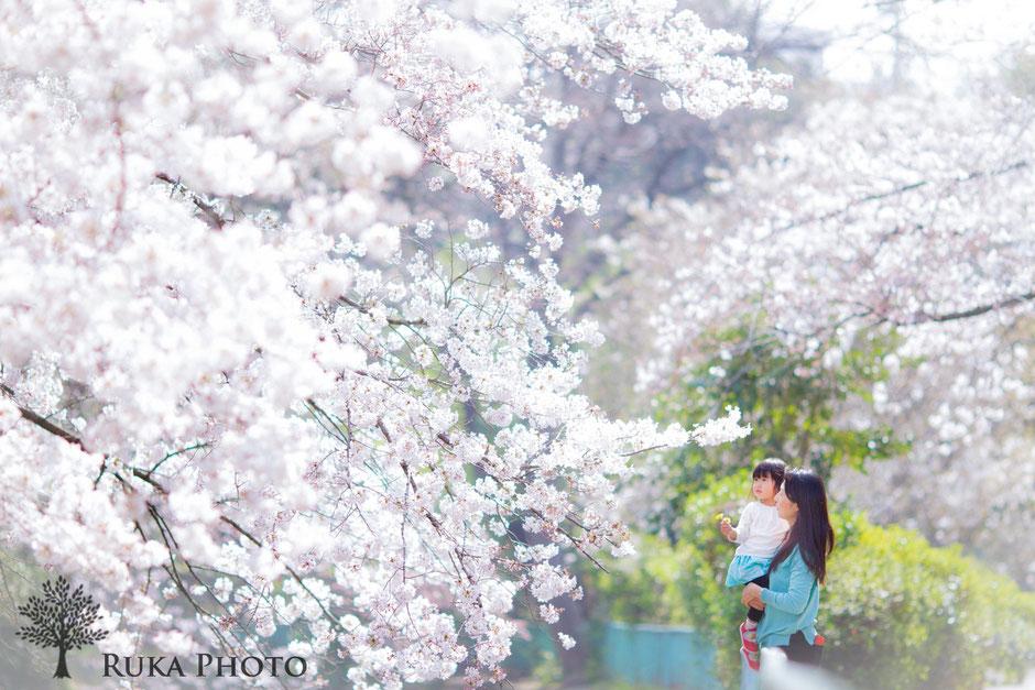2016/3/31撮影、王子公園