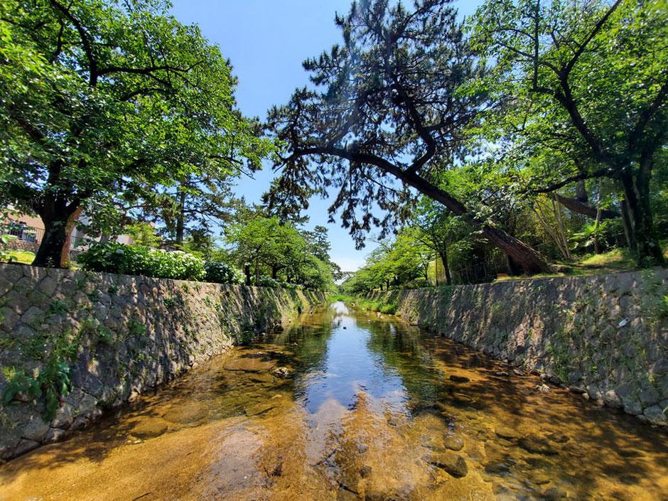 川はあちこちに渡れる飛び石があります(増水時は渡れません)