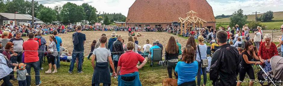 Zuschauer, Friesenfest, Gäste, Reitplatz