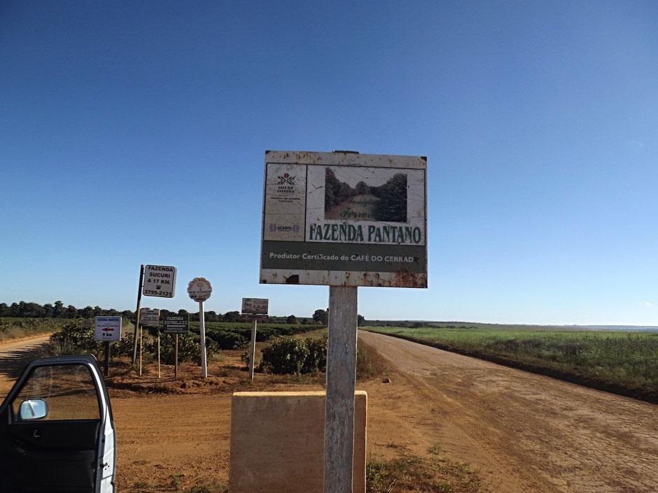 Anbaugebiet und Trocknungsböden der Fazenda Lages