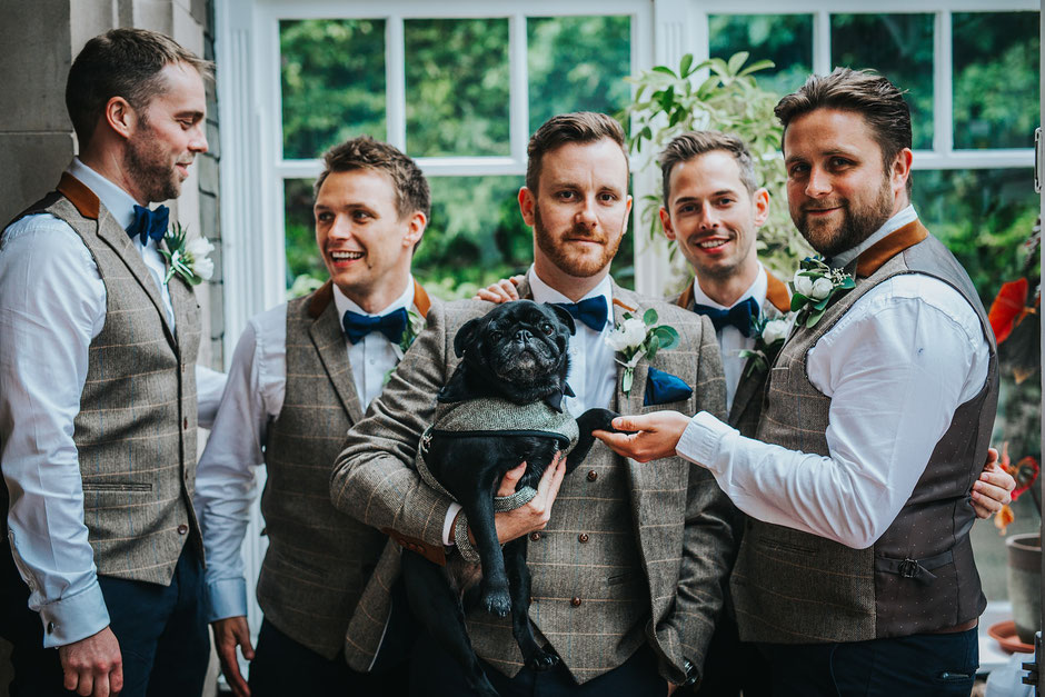 a group of groomsmen dressed in tweed with a black pug