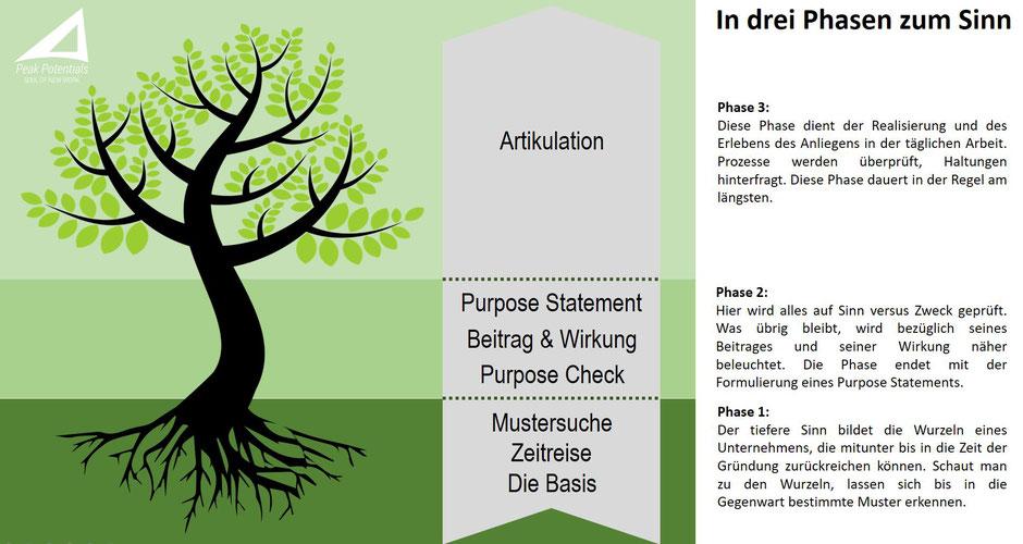 Das 3 Phasen Purpose Modell zum höheren Sinn