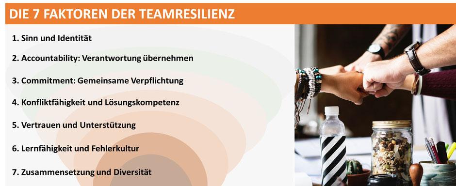Das Feld der Team Resilienz