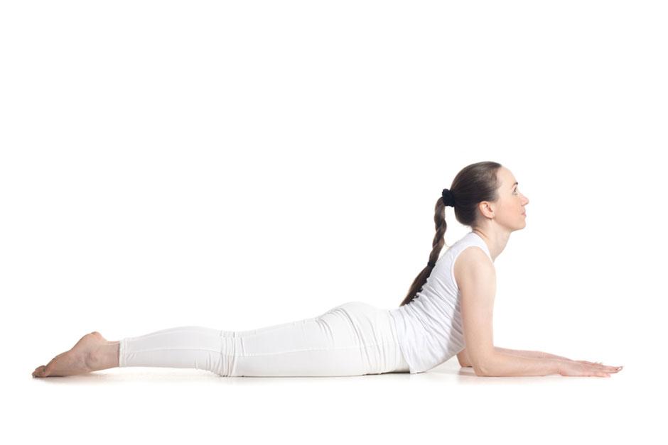 Sphinx Pose - Salamba Bhujangasana - Yoga Akademie Nürnberg Yogalehrer Ausbildungen, Yoga Retreats