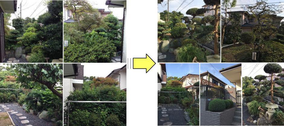 鎌倉市の由緒ある個人邸の剪定作業