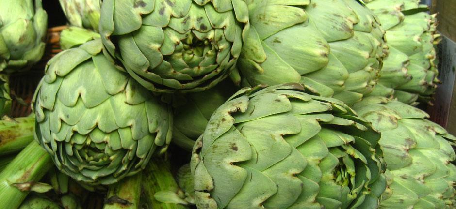 Institut PranaHvital - Blog - Les plantes de la detox