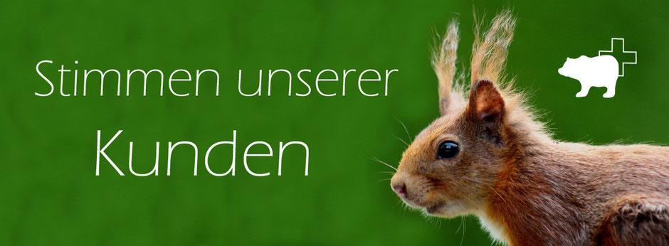 Kundenstimmen von Blaser Design Bern | Bewertungen | Kunsthandwerk aus Bern | Meinungen und Rezessionen | Kunst aus der Natur