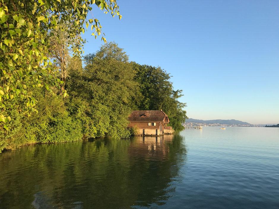 Die Halbinsel Au - einer der letzten grünen Flecken am Zürichsee. Ein Naturparadies, in welchem es sich ruhig arbeiten lässt.