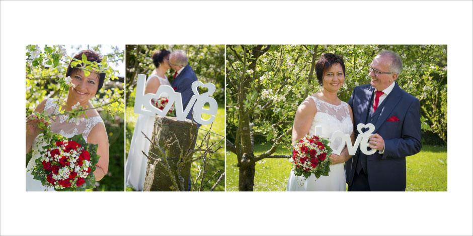 Hochzeit Eichenbühl