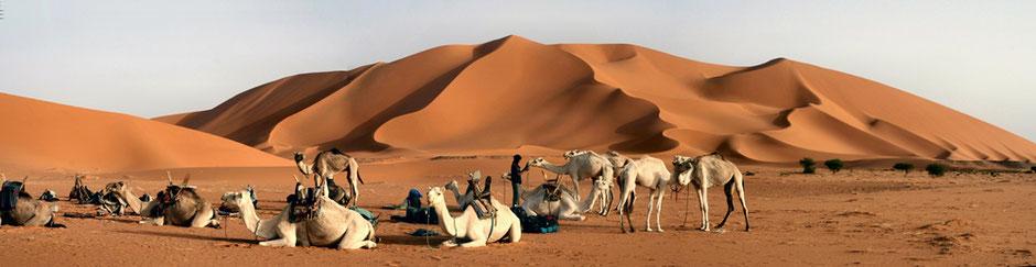 Adrar Ahnet, Algérie - Photo: zossolino (Wikipédia)