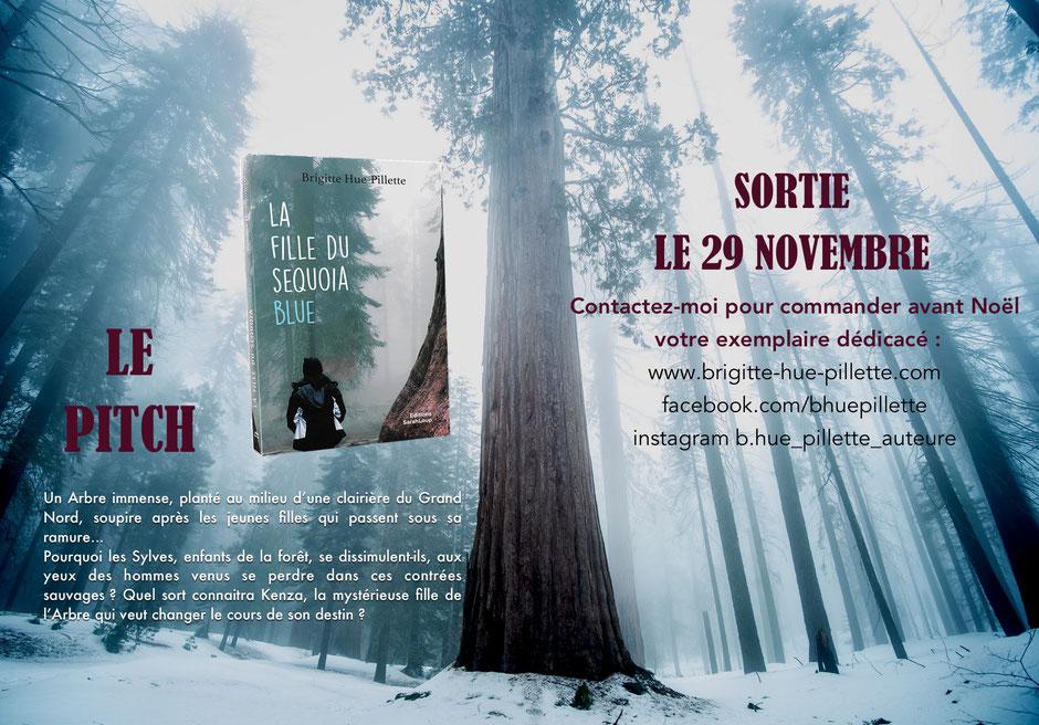 brigitte Hue-Pilette, roman, auteur bordeaux
