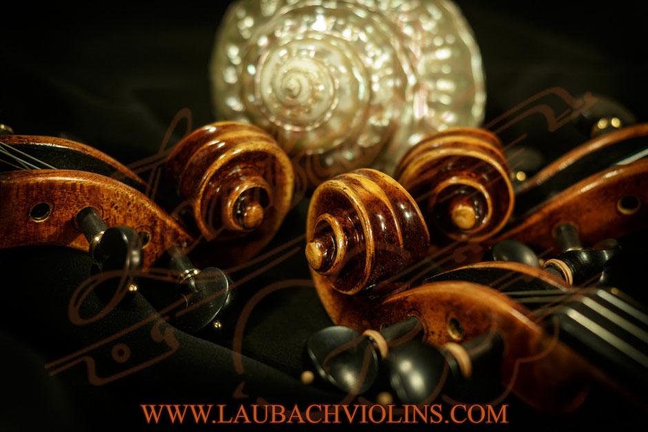 Laubach's Orchestra violins model 888V