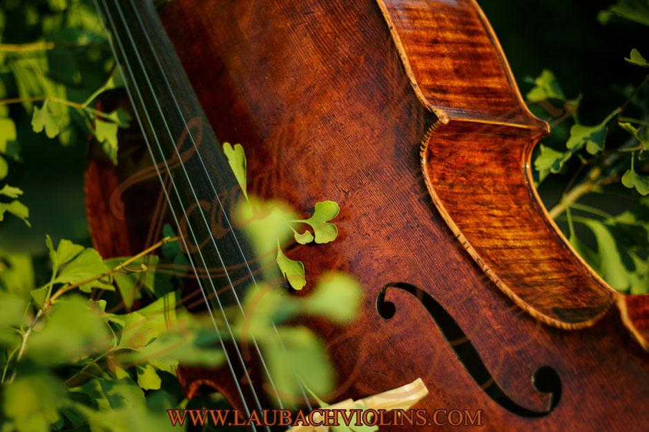 Domenico Montagnana und dem Antonio Stradivari  Meistercello  Model