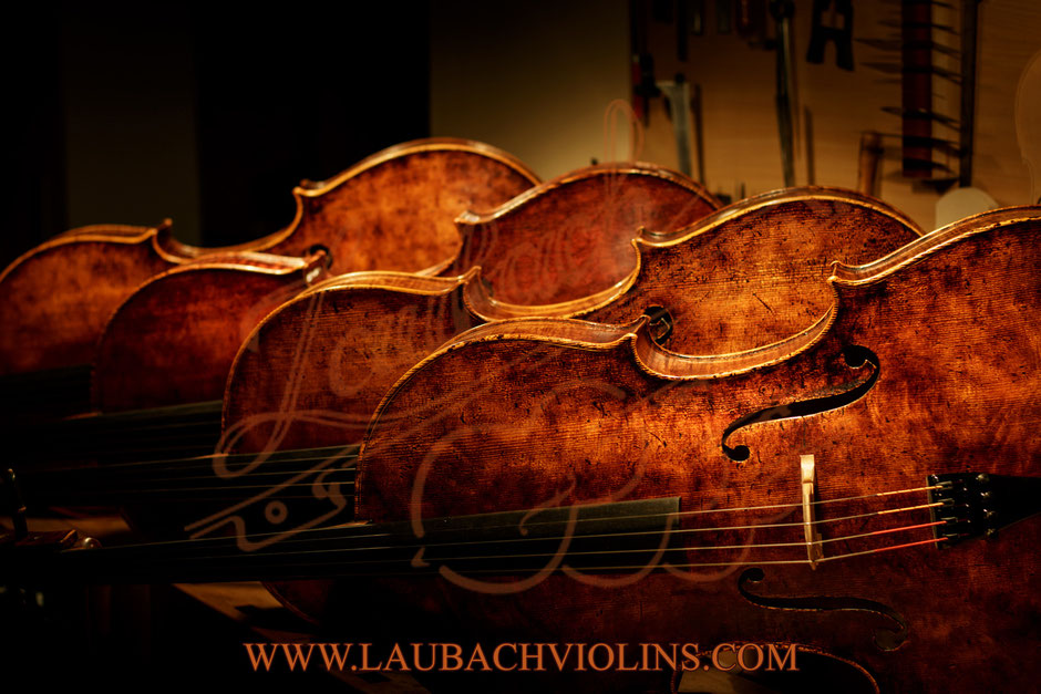 Master cellos  Laubach  Limited Edition 268 copy Domenico Montagnana one and Antonio Stradivari model