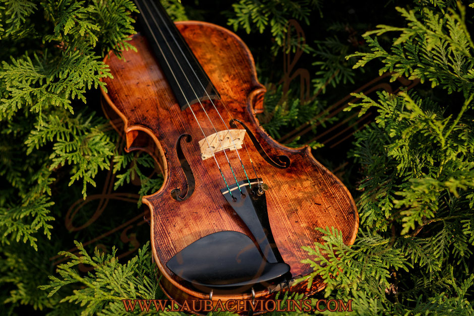 Antique  violin   Laubach Master  model 168 - 188V - 7/8