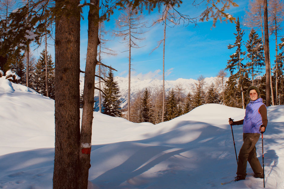©Nicole Hacke / Waldstück oberhalb von Haflung Dorf